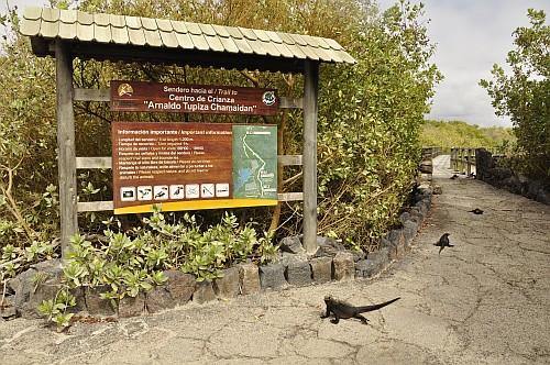 Weg zur Galapaguera