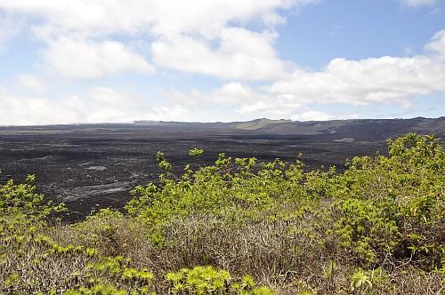 Sierra Negra Krater