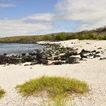 Playa Baquerizo Moreno