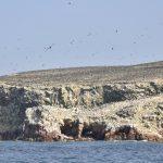 Ballestas-Inseln