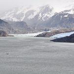 Grey Gletscher