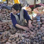 Am Kartoffelstand