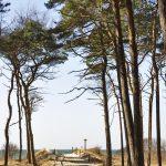 Blick zum Darßer Weststrand