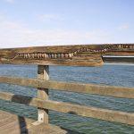 Kunst auf der Seebrücke