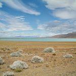Am Lago Argentino