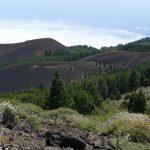 Bunte Vulkan-Vielfalt