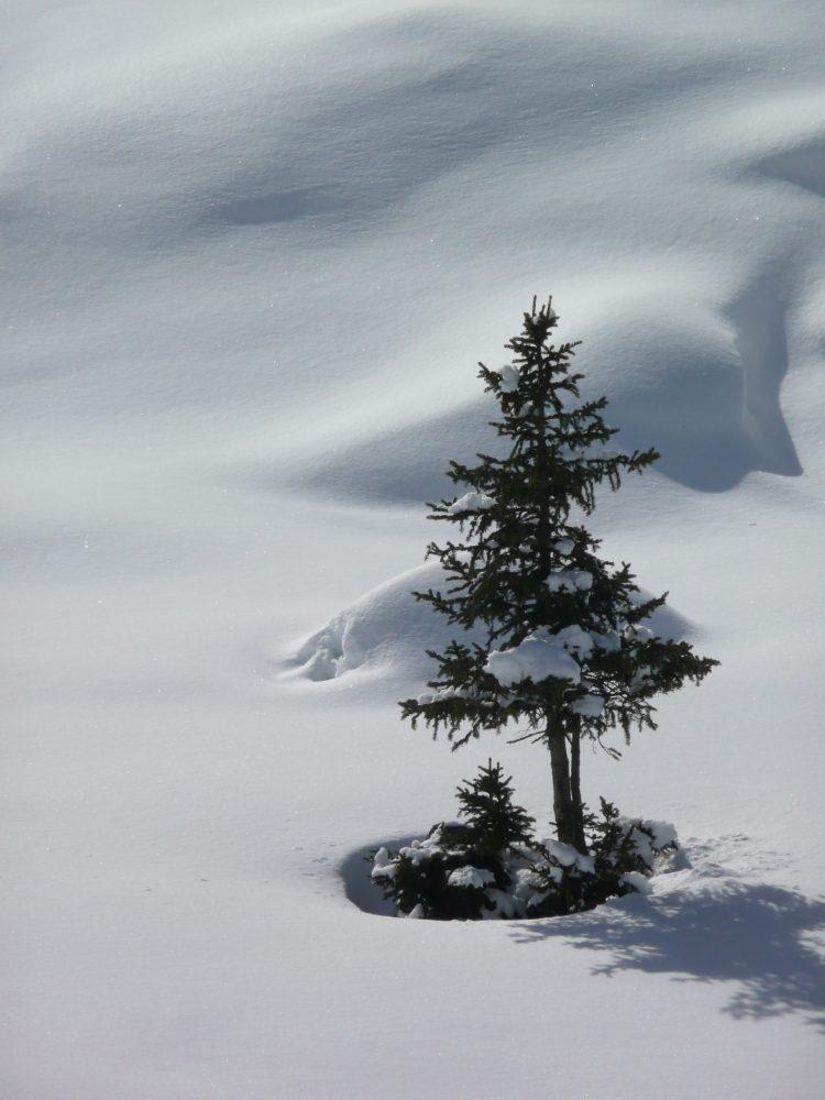 Schnee sollte weiß sein, nicht grau