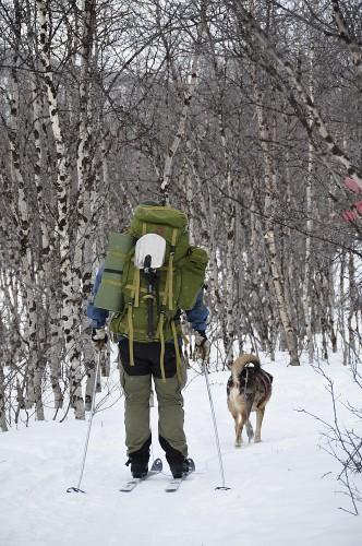 Den Kungsleden auf Skiern