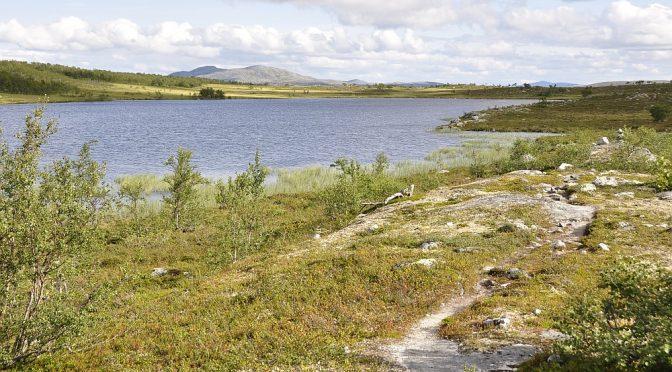 Femundsmarka Nationalpark