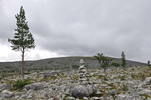 Blick übers Fjell