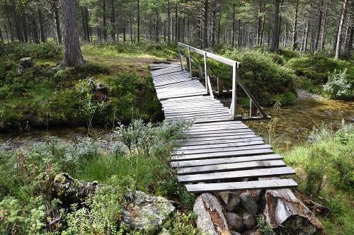 Luxus: eine richtige Brücke