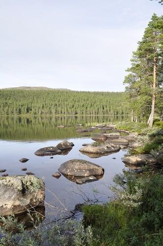 Das Ufer vor unserem Lagerplatz