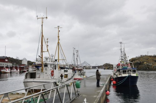 Hafen in Stamsund