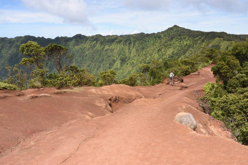 Beginn des Pihea Trails