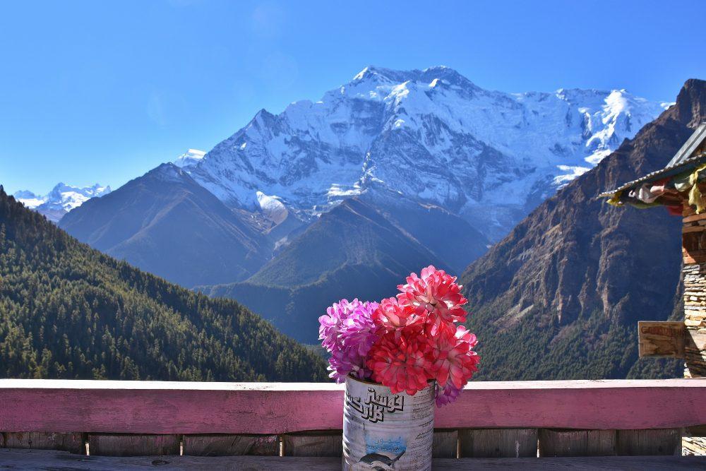 Teepause mit Blick auf Annapurna II