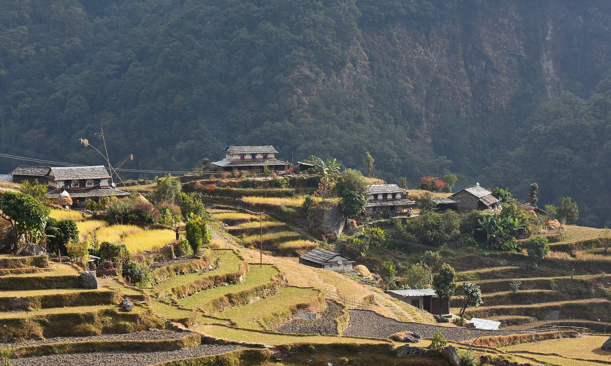 Durch Reisterrassen bergab