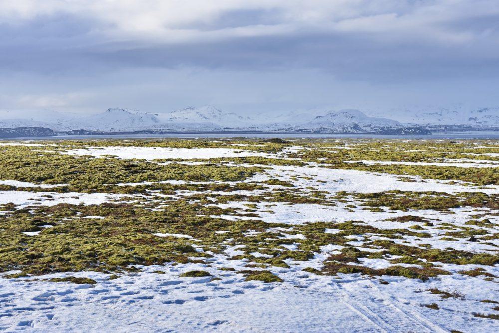 Weites Hochland im Þingvellir