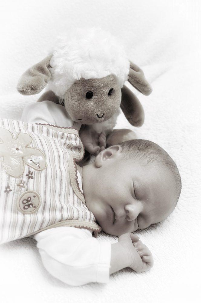 Der Blick des Betrachters folgt dem des Stofftiers zum Gesicht des Babys
