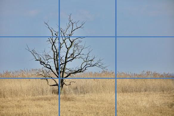 Horizont und Hauptmotiv sind entlang der Drittel-Linien angeordnet und lassen das Bild harmonisch wirken