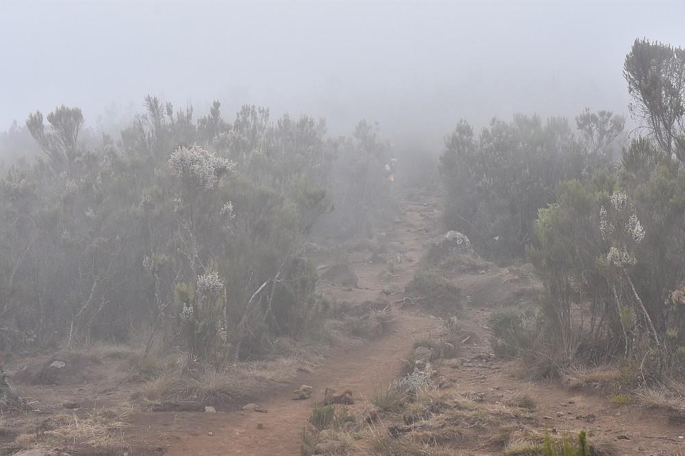 Wolken im Moorland